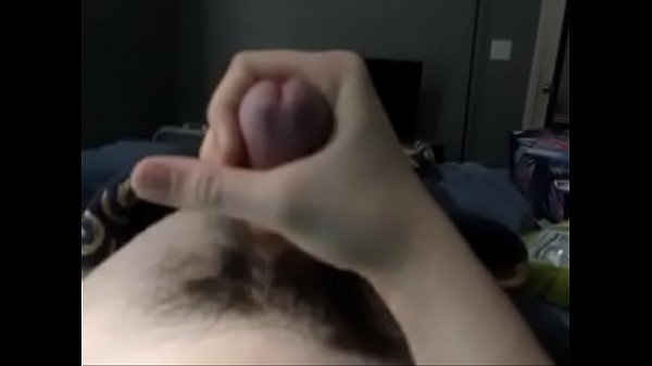 Young cock